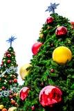 2 дерева Chrismas на белой предпосылке стоковое изображение rf