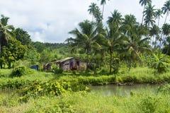 Деревенская лачуга в джунглях стоковое фото rf
