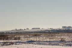 Деревенская безмятежность зимы в поле Стоковые Фотографии RF