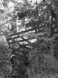 Деревенская жизнь стоковые фотографии rf
