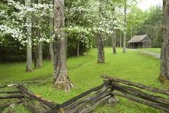 Деревенская кабина в весеннем времени Стоковая Фотография RF