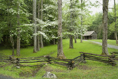 Деревенская кабина в весеннем времени Стоковое Изображение RF