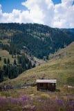 Деревенская кабина в горах Колорадо Стоковое Изображение RF