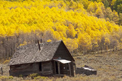 Деревенская кабина Колорадо Стоковая Фотография RF