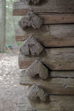 Деревенская кабина с журналами сердца форменными Стоковые Фото