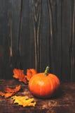 Деревенская карточка натюрморта осени с тыквами и листьями на vintag Стоковое Фото