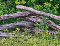 Деревенская пересеченная деревянная предпосылка леса загородки стоковое изображение rf