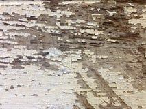 Деревенская покрашенная деревянная предпосылка текстуры Стоковое фото RF