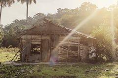 Деревенская старая лачуга в тропическом лесе джунглей в Юго-Восточной Азии стоковая фотография