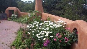 Деревенская сцена сада Стоковые Изображения RF