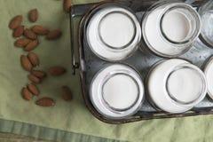 Деревенские бутылки молока миндалины Стоковая Фотография RF