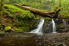 Деревенские падения на остров косаток в островах Сан-Хуана, Вашингтон стоковые фото