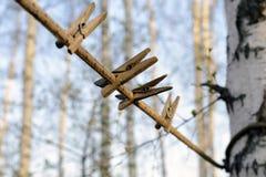 Деревенские старые деревянные зажимки для белья на веревочке на предпосылке дерева Селективный фокус Стоковые Изображения RF