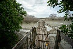 Деревенский бамбуковый мост около гаваней Бали Benoa Оно нет подключить с везде, как раз место для людей которые хотят рыбную лов стоковое фото rf