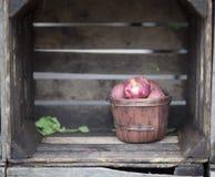 Деревенский бушель красных картошек Стоковое Изображение