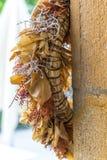 Деревенский венок на стене Стоковые Фото