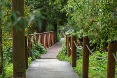 Деревенский деревянный мост над потоком в парке лета Стоковая Фотография
