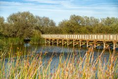 Деревенский деревянный мост через озеро стоковое изображение
