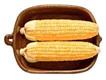 Деревенский золотой сырцовый сырой стержень кукурузного початка Стоковая Фотография RF