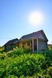 Деревенский огород за домом Стоковая Фотография