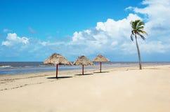 Деревенский пляж рая в Бразилии Стоковая Фотография