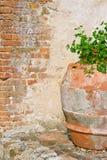 Деревенский старый цветочный горшок Стоковое фото RF