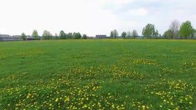 Деревенское футбольное поле
