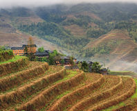 Деревня Азии рисовых полей террас риса крестьянская в хие гор Стоковая Фотография RF