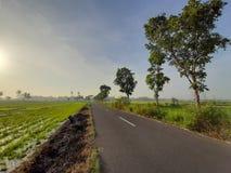 деревня без полей риса и свой естественный пейзаж странны и странны для того чтобы увидеть стоковое фото