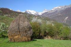 Деревня весной Стоковое Изображение RF