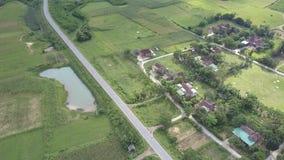 Деревня вида с воздуха около дороги окруженной сочными полями сток-видео