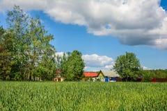 Деревня в лете стоковые фото