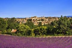 Деревня и лаванда Valensole Франция Провансаль стоковое изображение rf