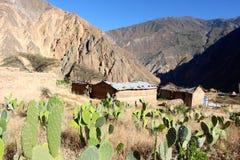Деревня каньона Colca малая стоковое фото rf