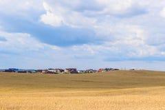 Деревня на горизонте между пшеничным полем и небом Стоковая Фотография RF