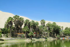 Деревня оазиса пальм около озера Стоковое Изображение RF
