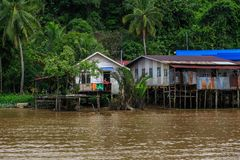 Деревня расположена на банках реки Limbang Serawak Стоковые Фото