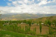 Деревня среди полей Стоковые Изображения