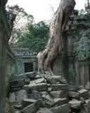 Деревня Angkor Wat в Камбодже Стоковые Изображения RF