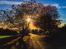 Деревня Birtley в Нортумберленде, Англии Стоковое Изображение