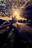 Деревня Birtley в Нортумберленде, Англии Стоковые Фотографии RF