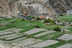 Деревня Kagbeni Часть трека цепи Annapurna в зоне консервации Annapurna Стоковые Изображения RF
