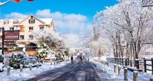 Деревня Kawaguchiko, Япония Стоковая Фотография