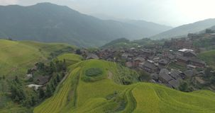 Деревня Longsheng и террасное поле риса сток-видео