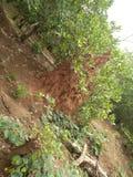 Деревня olla дома термита стоковые изображения rf