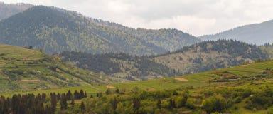 Деревня Pylypets прикарпатский взгляд сверху гор Стоковая Фотография