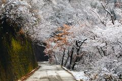 Деревня Shirakawa в последней осени в ноябре к сезону зимы стоковые изображения rf