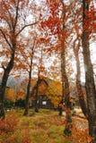 Деревня Shirakawa в последней осени в ноябре к сезону зимы стоковая фотография rf
