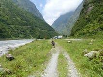 Деревня Tal в Непале Стоковые Изображения