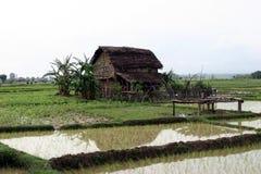 Деревня Terai в Непале стоковая фотография